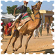 Pushkar Fair 2011 Tours